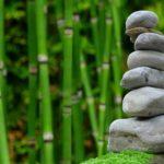 Piękny oraz uporządkowany zieleniec to zasługa wielu godzin spędzonych  w jego zaciszu w trakcie pielegnacji.